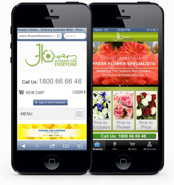 Ecommerce mobile website and iphone application design