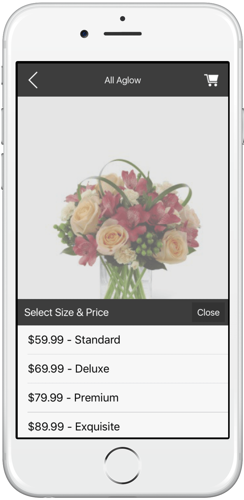 iPhone App Product Screen - Price Options